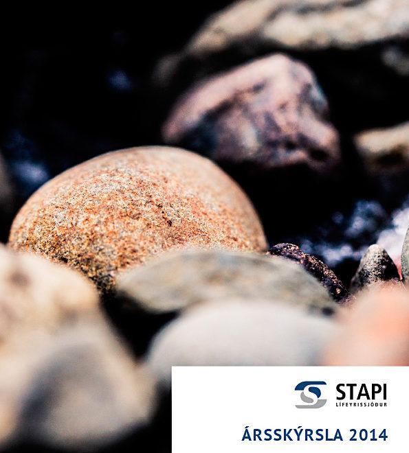 stapi-arsskyrsla2014